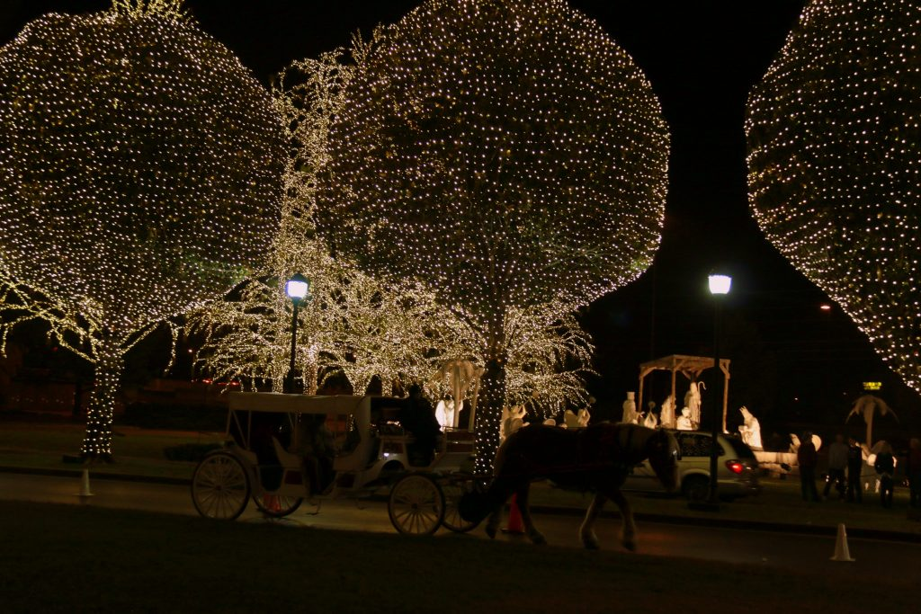 An evening horse-drawn carriage ride to go around the property and enjoy the beautiful outdoor decorations and lights