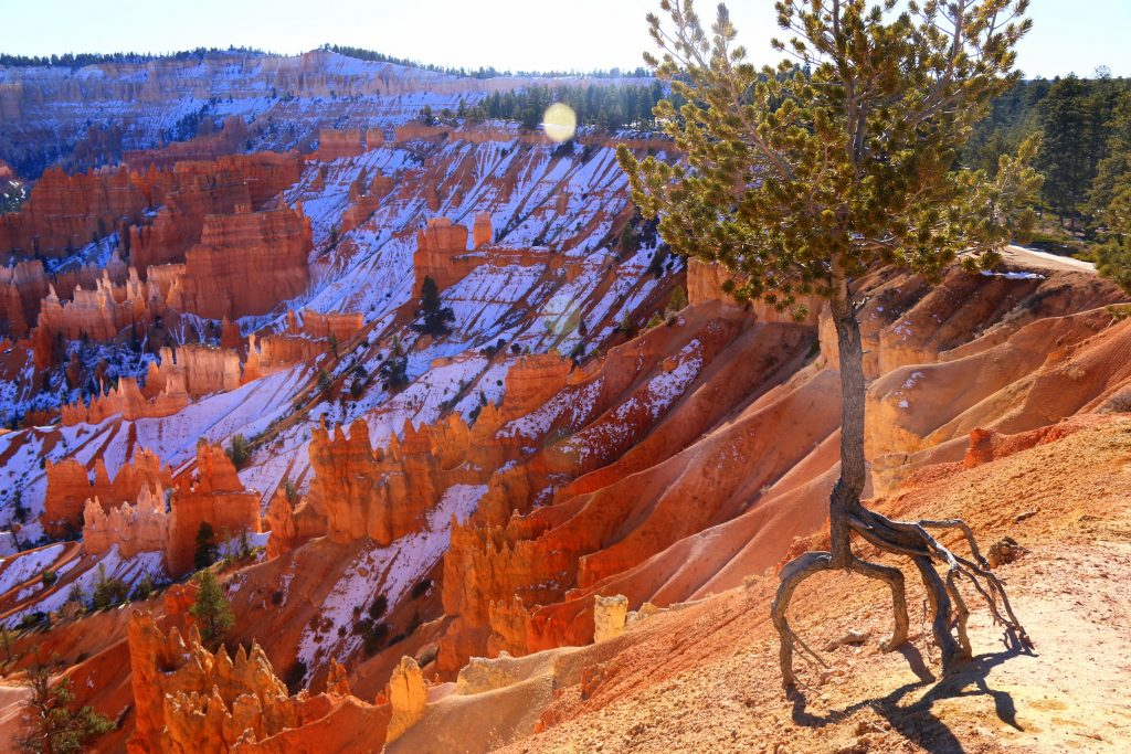Winter wonderland at Bryce Canyon
