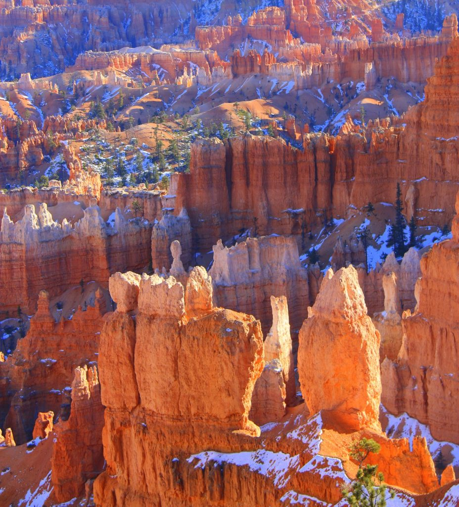 The Hoodoos, mystical shapes gives imagination and curiosity. It's amazing how forces of water carved these fragile land forms.