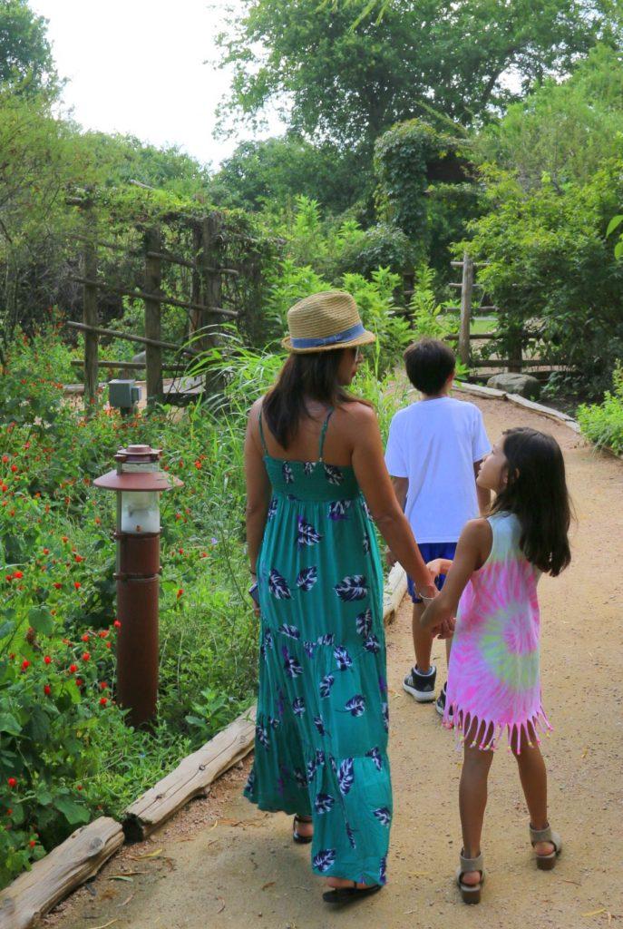 At the Butteryfly Garden